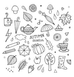 Set of different hand drawn autumn elements vector by kostenkodesign on VectorStock®
