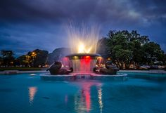 Fountain at Mission Bay, Auckland. @ Visit Auckland