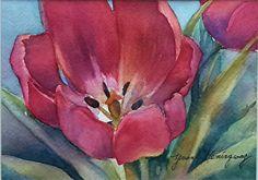 "Red Tulip by Yvonne Hemingway Watercolor ~ 10"" x 8"" Watercolor Paintings, Original Paintings, Flower Paintings, Acrylic Paintings, Watercolors, White Lotus Flower, Lotus Flowers, White Roses, Thing 1"