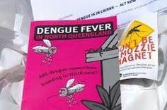 dengue in Australia