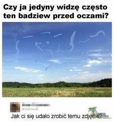 Past Tens, Funny Memes, Jokes, Poland, Haha, In This Moment, Humor, Comics, Husky Jokes