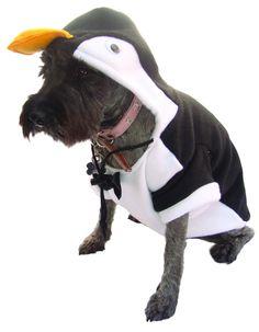 Disfraz de Pingüino para Perro #Disfraces  #Halloween #Disfraces #Perros