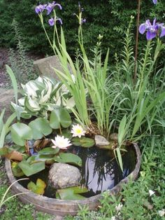 Im Boden begrabener Holzvass mit Iris Blumen und Seerosen