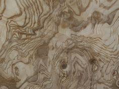 Ash burl Wood Slab Table, Wood Types, Wood Veneer, Real Wood, Wood Working, Wood Furniture, Wood Grain, Ash, Grains