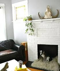 Dog bed in fireplace