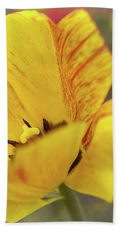 Yellow Flower Of Joy Beach Towel for Sale by Anna Matveeva