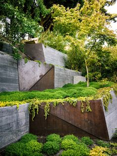 Browse landscape design pictures, discover eight landscape design rules and get tips from landscape design experts. Get design ideas for creating your dream front or backyard landscape. Contemporary Landscape, Urban Landscape, Modern Landscaping, Garden Landscaping, Landscaping Ideas, Landscaping Software, Sloped Garden, Terraced Garden, Landscape Architecture Design