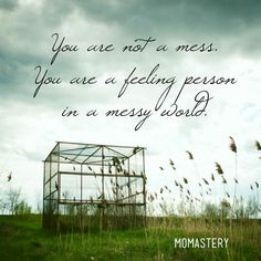 You are not a mess. You are a feeling person in a messy world.  #momastery #carryonwarrior http://momastery.com/blog/