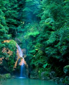 Ana's wedding August 2014 WE NEED TO FIND THIS WATETFALL!!!! Açores,  Portugal