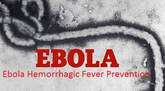 Ebola virus disease, formerly known as Ebola haemorrhagic fever, is a severe and fatal illness in humans.It is transmitted to people mainly from fruit bats.