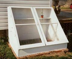 Cold frame built with used storm windows and bricks and boards from an old bookshelf.  White paint and hardware was less than $50.