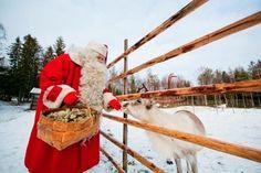 Weihnachten in Finland - Hauskaa Joulua!