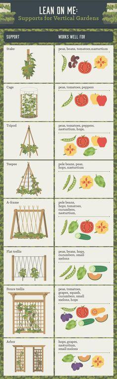 Génial : TOUT LES TUTEURS adaptés par plantes ( ouf, il y a le dessin du légume à côté, je me sens moins larguée niveau anglais :)