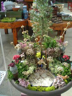 Rob Proctors Fairy Garden