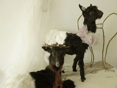 Lovely vintage Taxidermy...baby by CharmantCharmant on Etsy