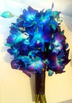 Blue Dendrobium Orchid Bouquet! Definitely our wedding flowers :)
