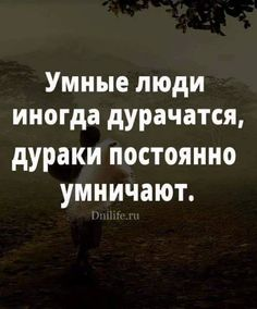 Фотография Wall Quotes, Motivational Quotes, Funny Quotes, Inspirational Quotes, Best Advice Quotes, Russian Quotes, Clever Quotes, Perfection Quotes, Some Quotes