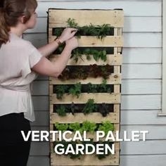 Vertical Fruit And Veggie Pallet Garden - Jardin Vertical Fachada Garden Crafts, Garden Projects, Garden Art, Big Garden, Inside Garden, Garden Modern, Diy Projects, Pallet Projects, Vertical Pallet Garden