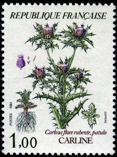 Show Us Your Beautiful Flowers on Stamps! - Stamp Community Forum - Page 16