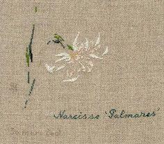 "Narcisses ""Palmares"""