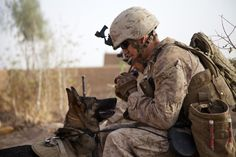 A Marine and his dog (U.S. Marine Corps photo by Cpl. Alejandro Pena/Released)