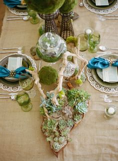 Drift Wood Centerpieces with Succulents that can be re-planted, or taken away as favors. Wood Centerpieces, Succulent Centerpieces, Succulent Arrangements, Floral Arrangements, Centerpiece Ideas, Rustic Wedding, Wedding Reception, Eco Green, Center Pieces