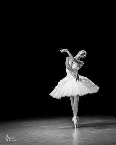 Olga Smirnova, rehearsing The Dying Swan  Photo: Jack Devant