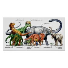 Types Of Dinosaurs Posters