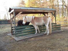 Horse Feeder, Hay Feeder, Habitats, Paradise, Horses, Google, Animals, Ideas, Animales