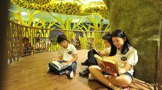 La biblioteca con alma de árbol