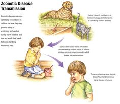 zoonoses - Google Search