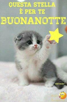 Italian Memes, Italian Quotes, Good Night Greetings, Good Night Wishes, Italian Life, Desiderata, Sweetest Day, Sleep Tight, Qoutes