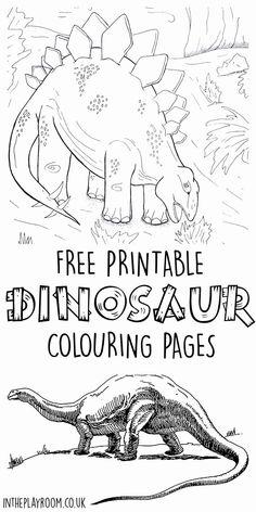 Dinosaur Worksheets, Dinosaur Printables, Dinosaur Activities, Dinosaur Crafts, Color Activities, Activities For Kids, Printable Worksheets, Printable Coloring, Dinosaur Dinosaur
