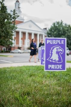 Get ready to show that #PurplePride during Pride Days