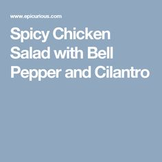 Spicy Chicken Salad with Bell Pepper and Cilantro