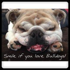 "❤ ""Smile if you love Bulldogs!"" ❤"