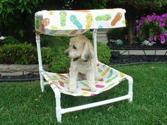 Outdoor dog bed with removable canopy. Buy it or DIY it!