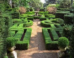 Ascott House Gardens, Buckinghamshire, UK | A formal parterre from clipped box hedging in these National Trust gardens (19 of 22)