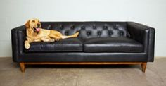 Tips That Help You Get The Best Leather Sofa Deal. Leather sofas and leather couch sets are available in a diversity of colors and styles. A leather couch is the ideal way to improve a space's design and th Black Leather Sofas, Best Leather Sofa, Leather Sectional Sofas, Black Sofa, Gray Sofa, Leather Chairs, Ottoman Sofa, Sofa Couch, Comfy Sofa