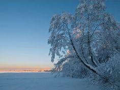 Jezero Ladoga předtím. Jezero Ladoga: informace a vlastnosti. Rybaření na jezeře Ladoga: zima z ledu a na otevřené vodě Snow, Outdoor, Outdoors, Outdoor Games, The Great Outdoors, Eyes, Let It Snow