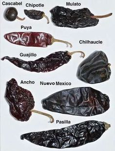 Tipos de chili's     Dried chili's used in Mexican food