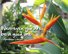 Whatever you are be a good one - Abraham Lincoln quote Photo taken - Bocas Del Toro, Panama Abraham Lincoln Quotes, Inspirational Quotes Pictures, Picture Quotes, Inspire Me, Panama, School Ideas, Prayers, Teaching, Motivation
