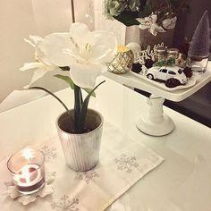 A bit more Christmas stuff again today 🎄💚🎄#21daysuntilchristmas #christmascountdown2016 #christmasiscoming #whitehome #valkoinenkoti #rivieramaison #rivieramaisondetails #aspentree #cozy #takeiteasy #relax #homesweethome #interior4homes #amaryllis #housedoctor #drivinghomeforchristmas #beetle #joulutulee #whitechristmas #ihanajoulu #nannantyyliin