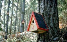 Birdhouse alarm  - Arduino na prevenção de incêndios florestais