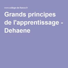 Grands principes de l'apprentissage - Dehaene