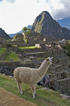 Machu Picchu, Peru, By Alika