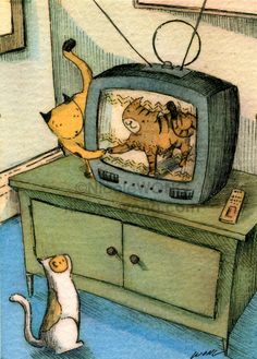 Cat TV | Nicole Wong