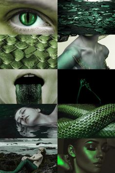 """echidna aesthetic in Greek mythology, Echidna (/ɪˈkɪdnə/; Greek: Ἔχιδνα, """"She-Viper"""") was a monster, half-woman and half-snake, who lived alone in a cave. She was the mate of the fearsome monster. Witch Aesthetic, Aesthetic Collage, Character Aesthetic, Greek And Roman Mythology, Greek Gods, Magical Creatures, Fantasy Creatures, Images Aléatoires, Slytherin Aesthetic"""