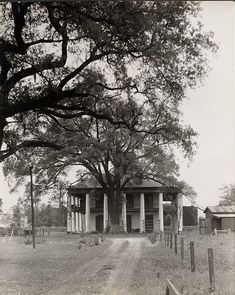 Old Mansions, Abandoned Mansions, Abandoned Houses, Abandoned Places, Old Houses, Old Southern Homes, Southern Plantation Homes, Southern Mansions, Southern Style