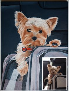 Custom Pet Oil Painting on Canvas From Your Photograph by Shannon Hastings by NewOriginalPaintings on Etsy https://www.etsy.com/listing/194660651/custom-pet-oil-painting-on-canvas-from